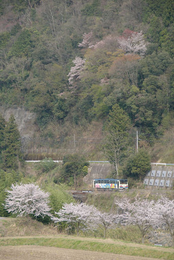 20070412dsc_2772